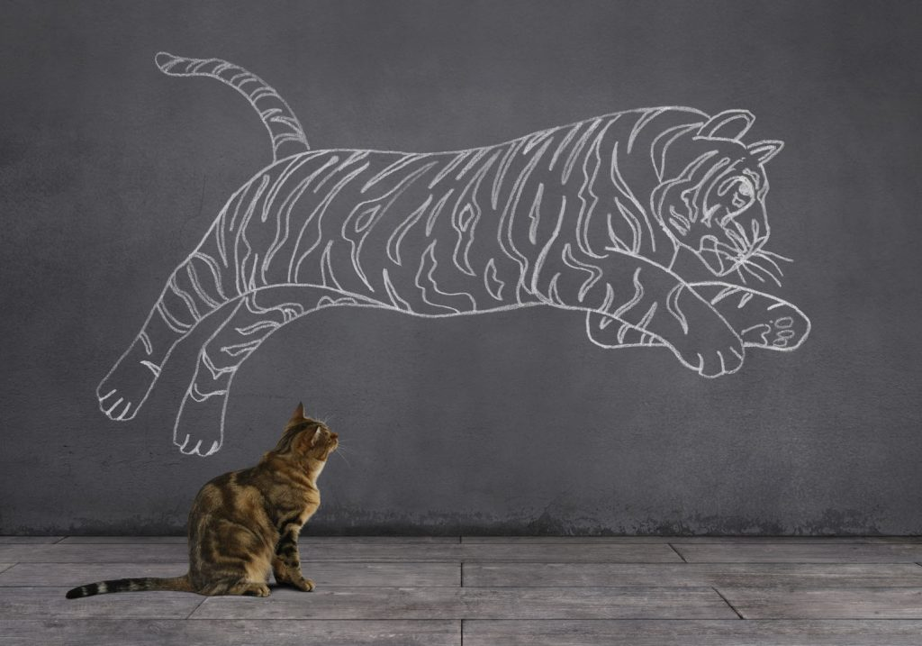 Photo of a cat look at tiger painting